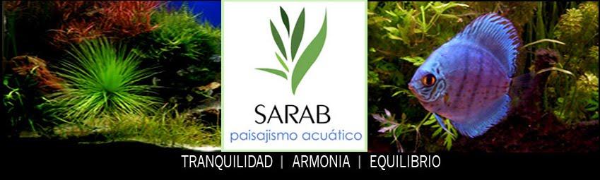 SARAB -Paisajismo acuático- TIENDA VIRTUAL PARA ACUARIO.