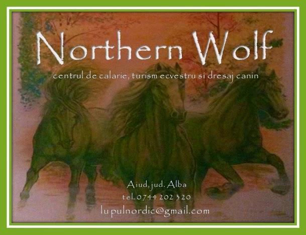 Northern Wolf - turism ecvestru