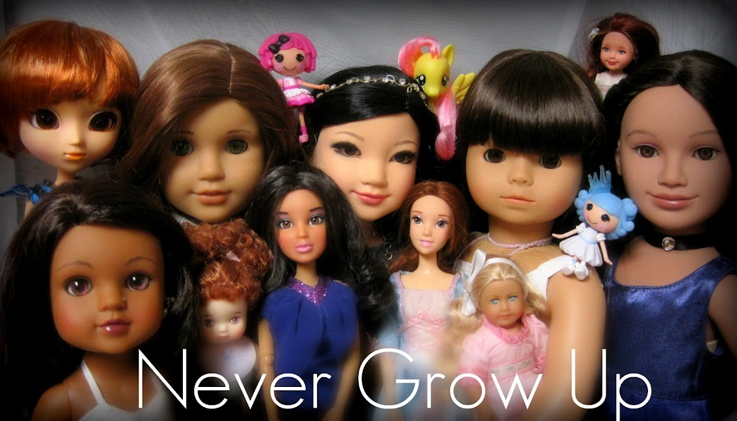 Never Grow Up:  A Mom&#39;s Guide to Dolls and More!