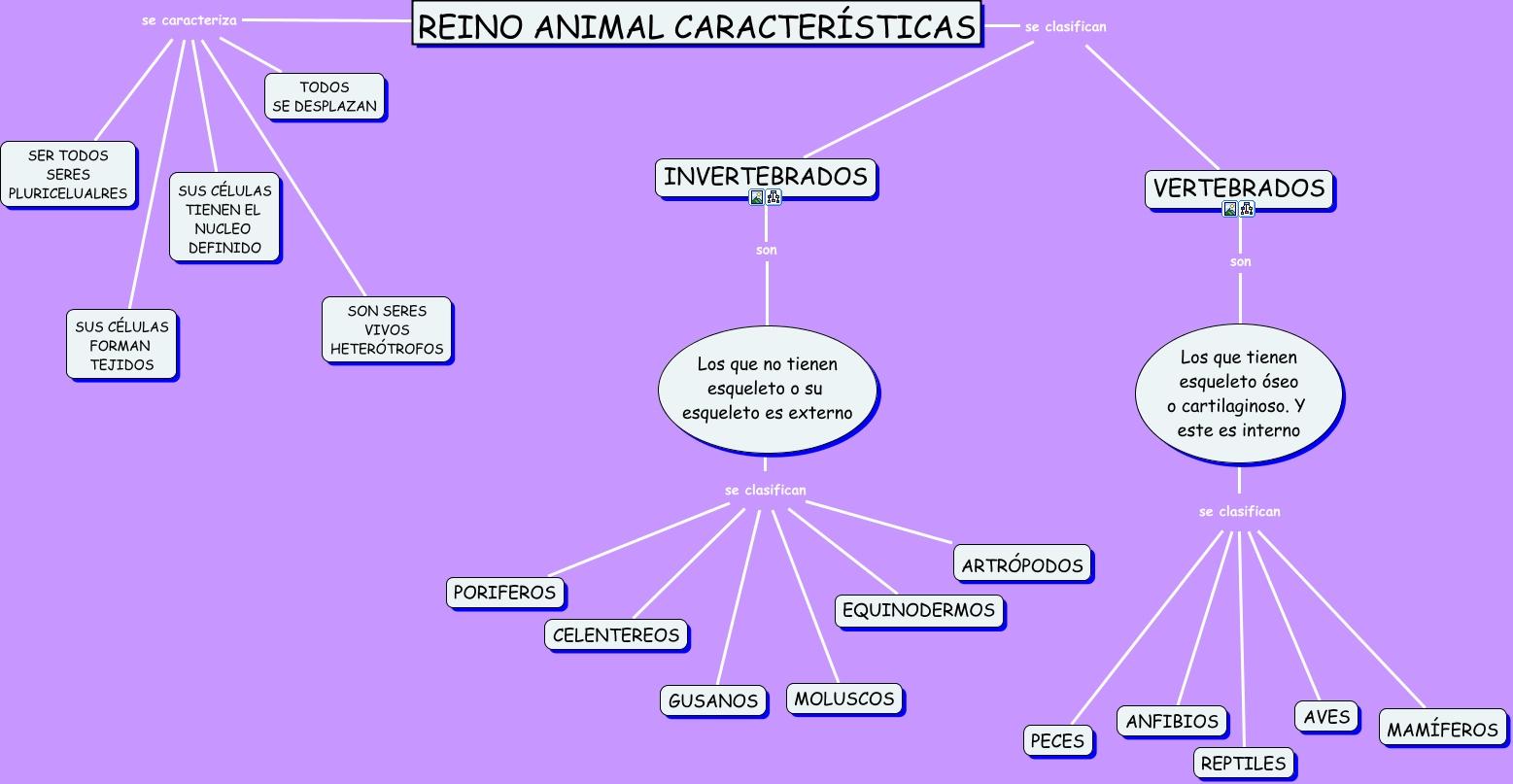imagenes de animales y sus caracteristicas
