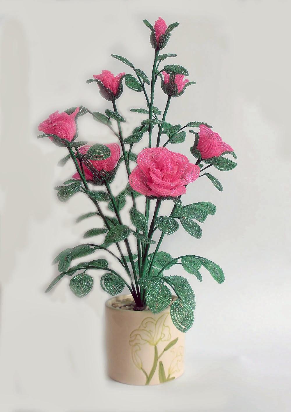 Как сохранить саженцы роз до высадки 48