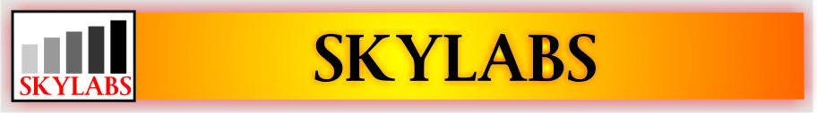 SkyLabs Servis Ponsel