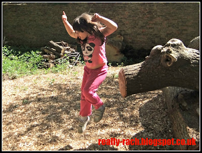 Jumping at the Wolf's Den - Erddig