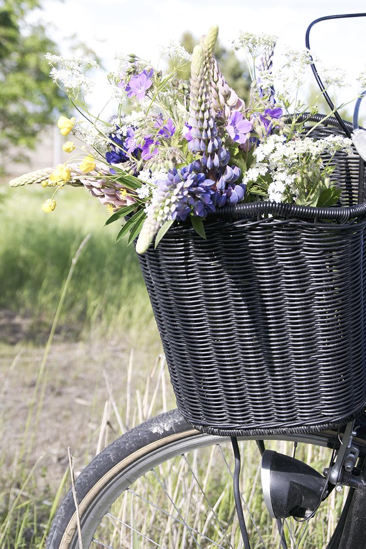 Baraetthem: bara längs med vägen blommor