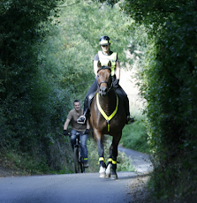 Horse and Cycle Safety