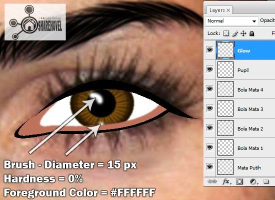 membuat vector cahaya pupil mata menggunakan photoshop - tutorial membuat vector di photoshop - membuat foto menjadi kartun dengan photoshop
