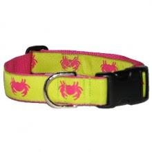 Personlized Dog Collar Amazon