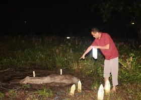 Warga menunjukkan penemuan mayat yang muncul di atas tanah pemakaman Muslim di Gg Sosial, Jl Adisucipto, Pontianak Tenggara.