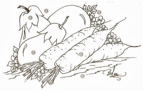 desenho de beringelas e cenouras para pintar em tecido