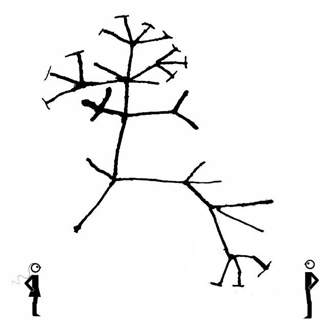 fractal. raiz evolutiva,