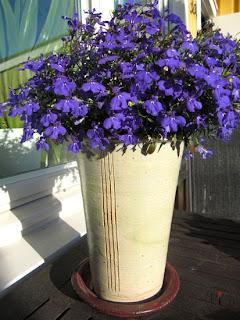 blomma i kruka av Eva-Karin Sandqvist