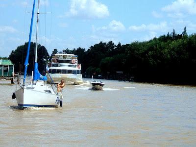 imagen catamaran+quilmes+delta del tigre