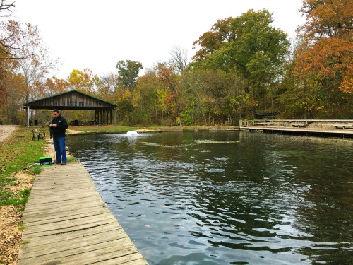Mountain Springs Trout Park in Missouri