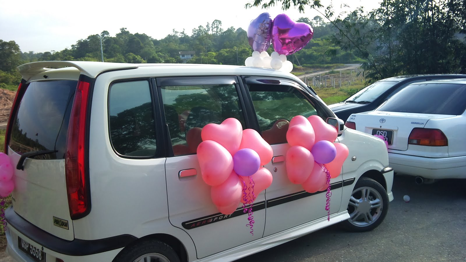 Balloon decorations for weddings, birthday parties, balloon ...