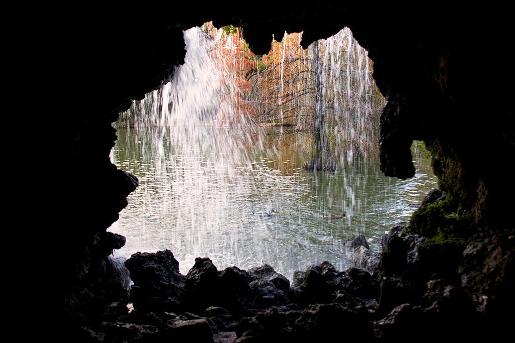 fotografía estanque palacio de cristal El Retiro
