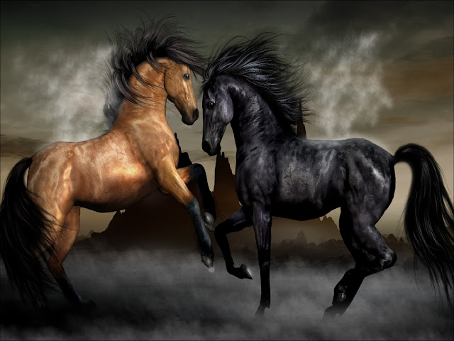 Amazing Horse Wallpapers