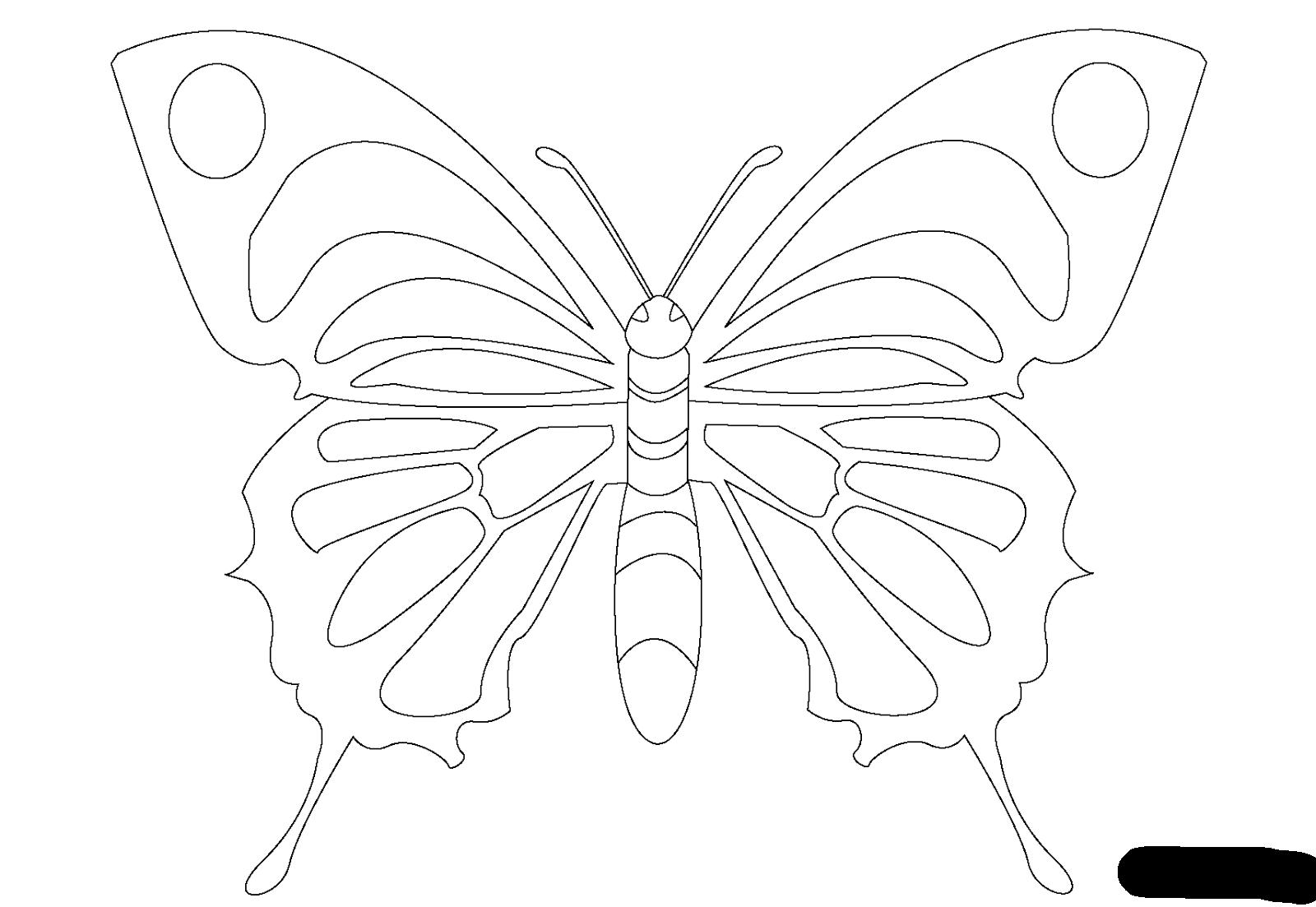 Dibujos para Colorear: Dibujos de Mariposas