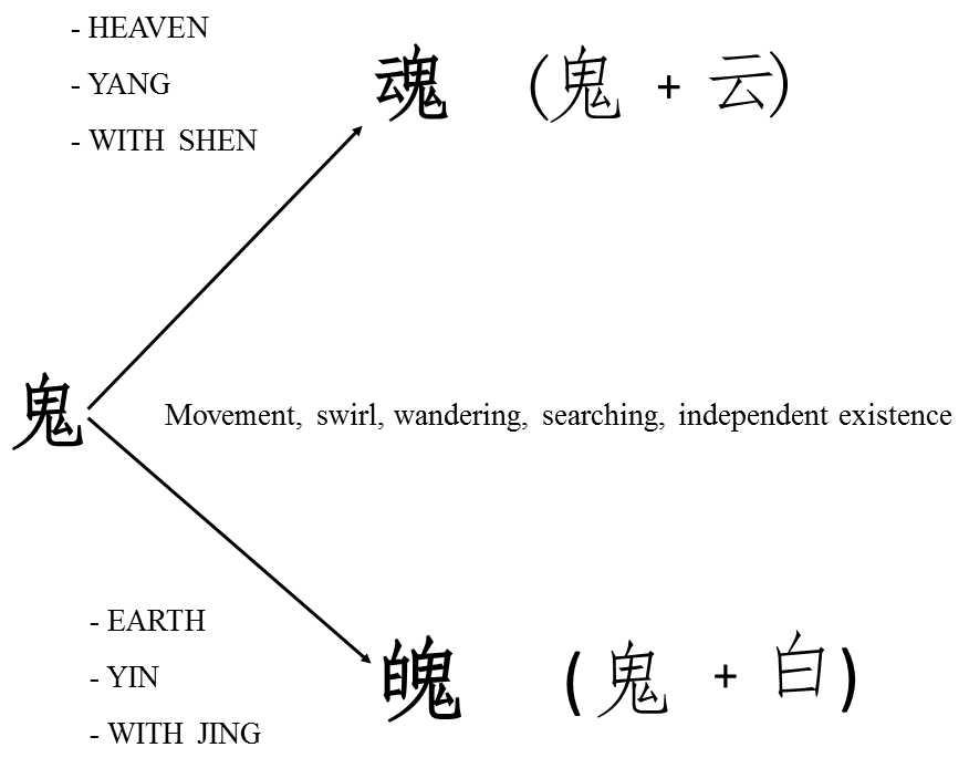 Maciocia Online Shen And Hun The Psyche In Chinese Medicine