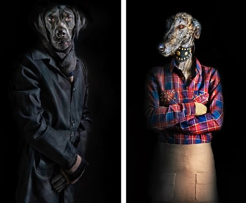 01-Dogs-Labrador-and-Greyhound-Miguel-Vallinas-Segundas-Pieles-Second-Skins-Smartly-Dressed-Animals-www-designstack-co