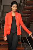 Pooja hegde latest photos-thumbnail-9