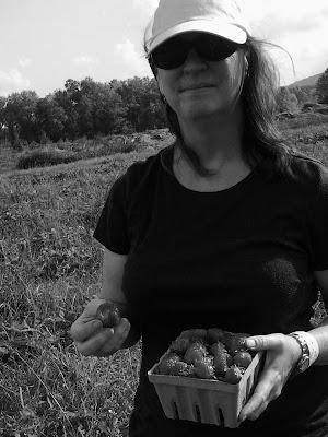 Theresa McGallicher Loudoun County Limbo strawberries