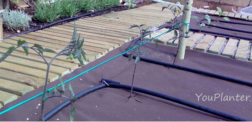 Youplanter ideas para el jard n el huerto jard n 1 for Baldosas de madera para jardin