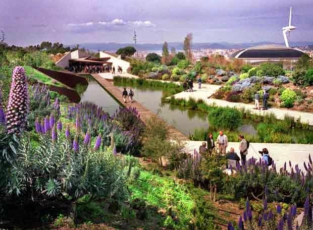 Dintorni barcellona giardino botanico di barcellona for Bar jardin barcelona