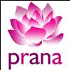 Prana Yoga Albacete