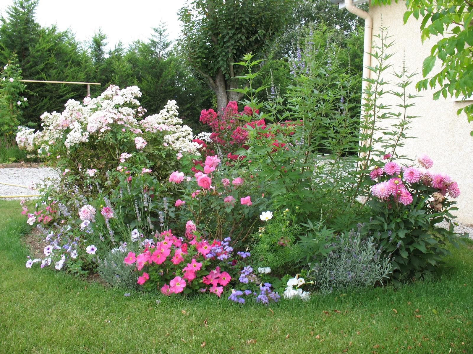 Roses du jardin ch neland du rose et des roses for Jardin roses