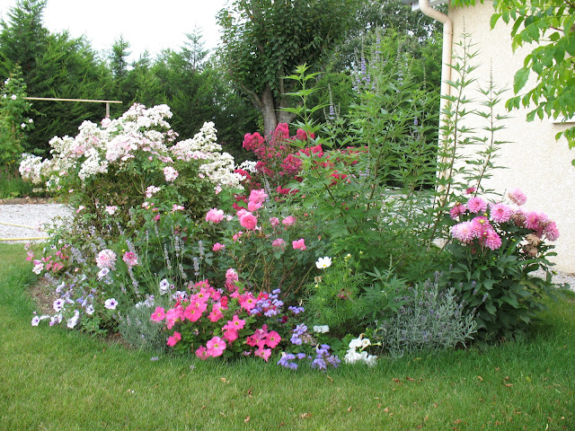 roses du jardin ch neland du rose et des roses. Black Bedroom Furniture Sets. Home Design Ideas