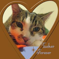 Tucker  RIP
