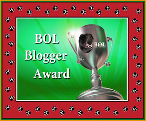 BOL Blogger Award, December 2012