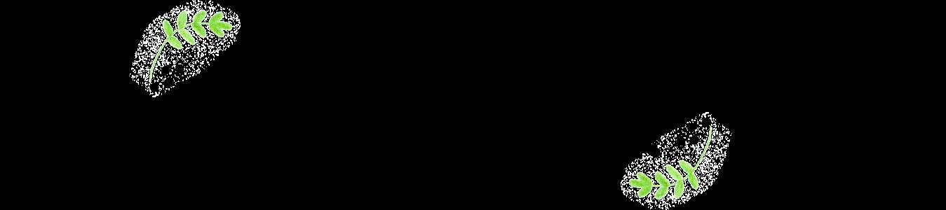 The Illustrai