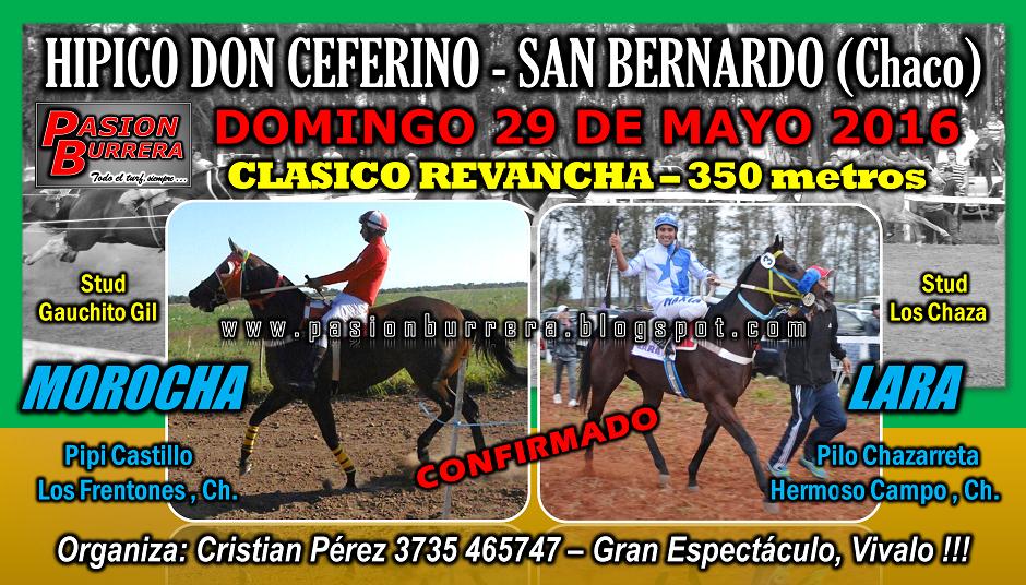 SAN BERNARDO - 29 DE MAYO - 350