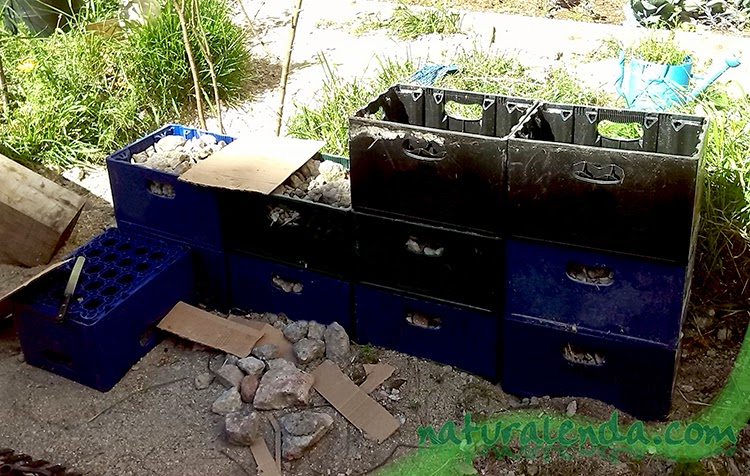 construyendo el muro de gaviones