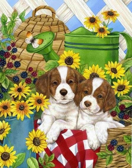 Les chiens et le jardin