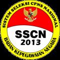 Seleksi CPNS Online 2013