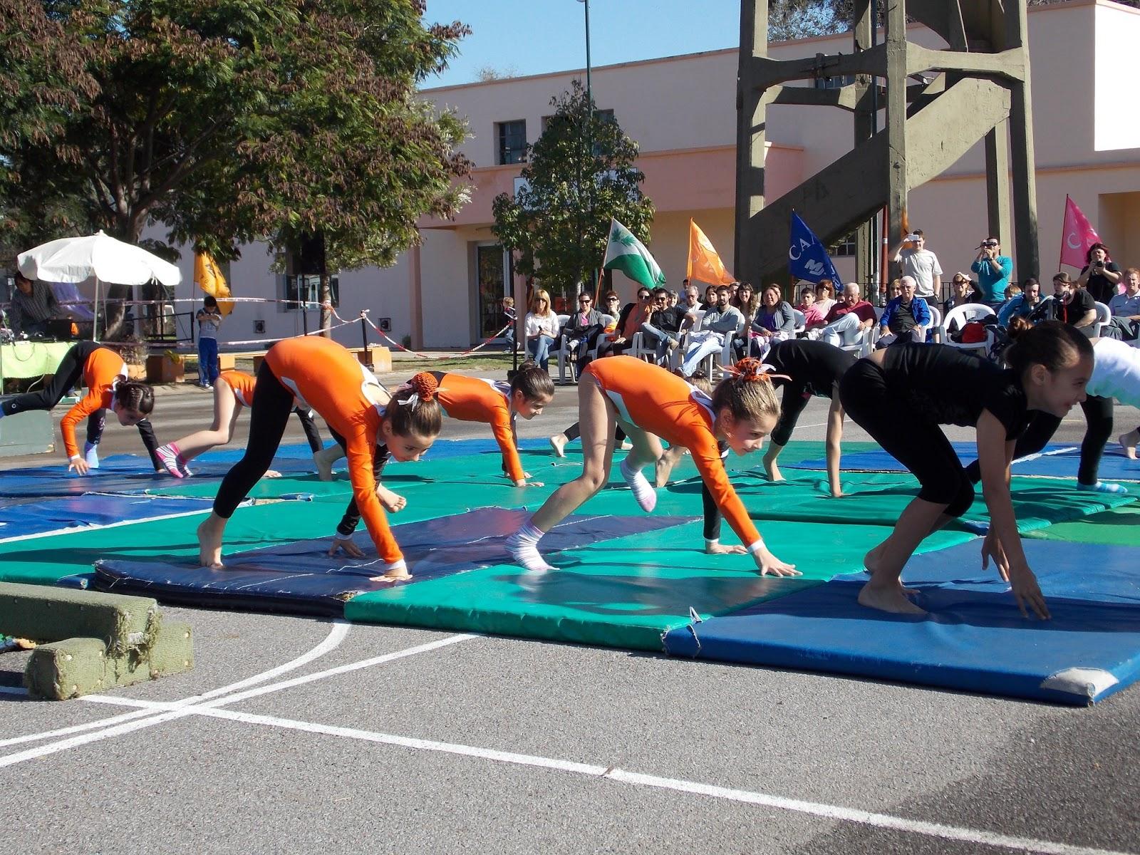 Deportes san isidro for Colchonetas para gimnasia