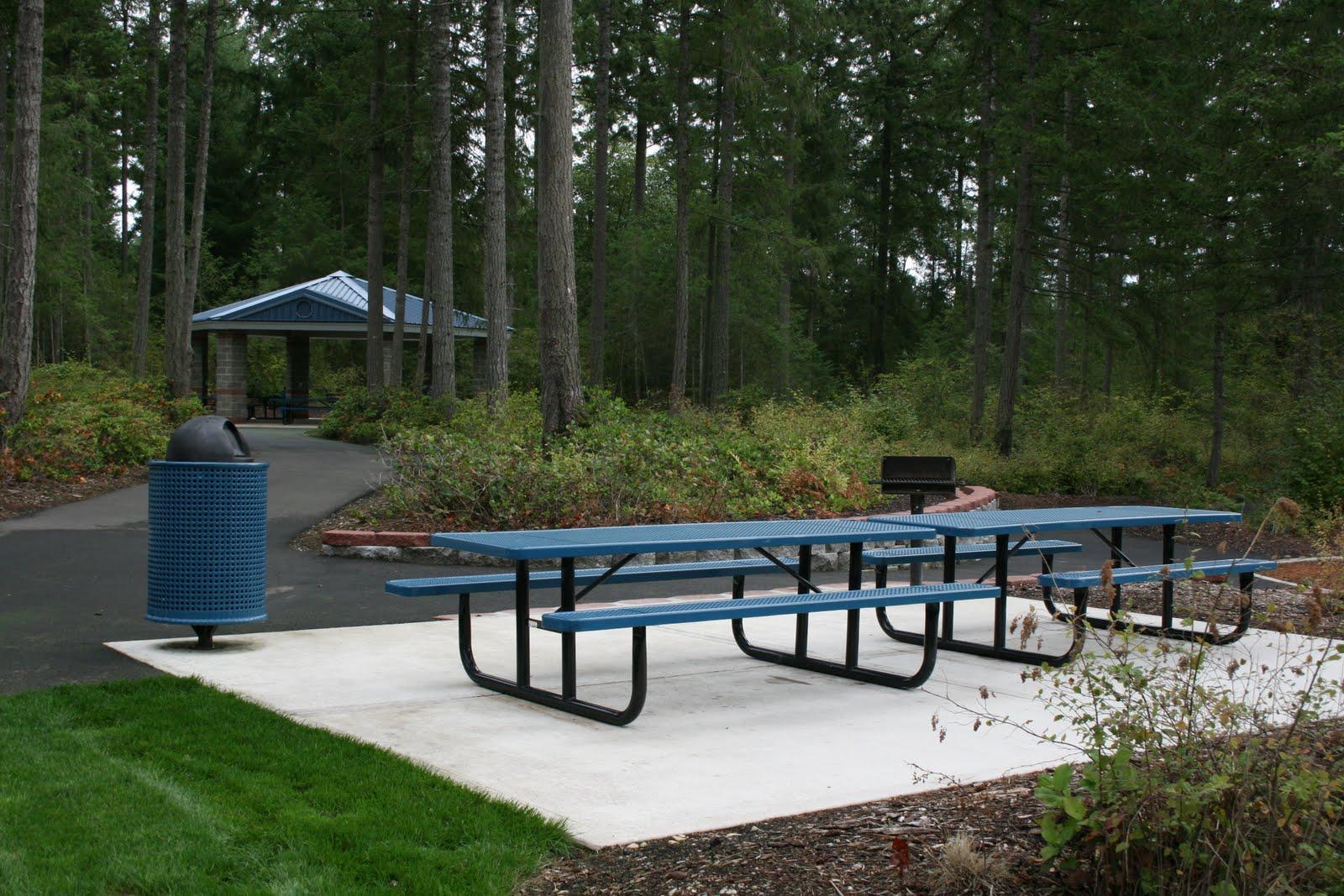 Swing and Slide: Meridian Neighborhood Park