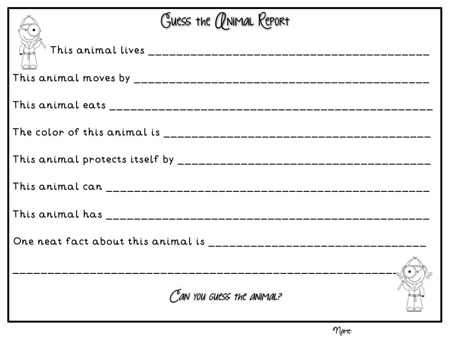 Animal book report worksheet