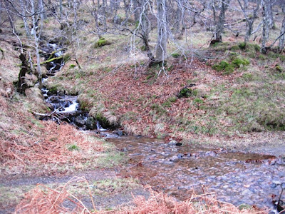The trail passes Pannanich Burn, south Deeside