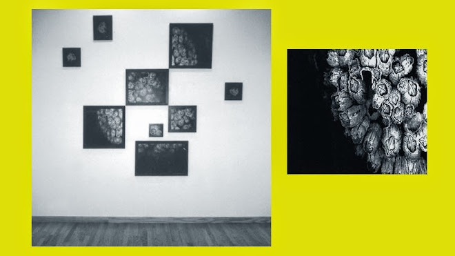 ASTRAL PROJECTIONS: COLONIES & detail, 1999 [Gelatin silver prints 6' w x 5' h]