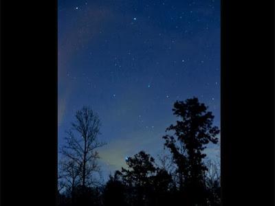 Imagen del cometa Ison, 20 de Noviembre 2013