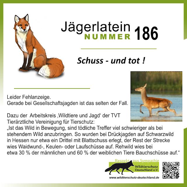 Jägerlatein Nr. 186: Schuss und tot!