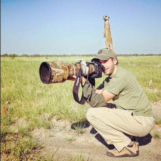 fotografo con suricata en su cabeza