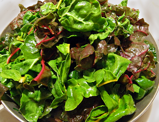 Chard Leaves almost Overflowing Saute Pan