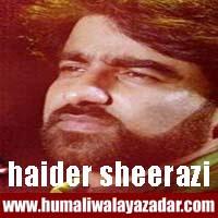 http://ishqehaider.blogspot.com/2013/11/haider-sherazi-nohay-2014.html