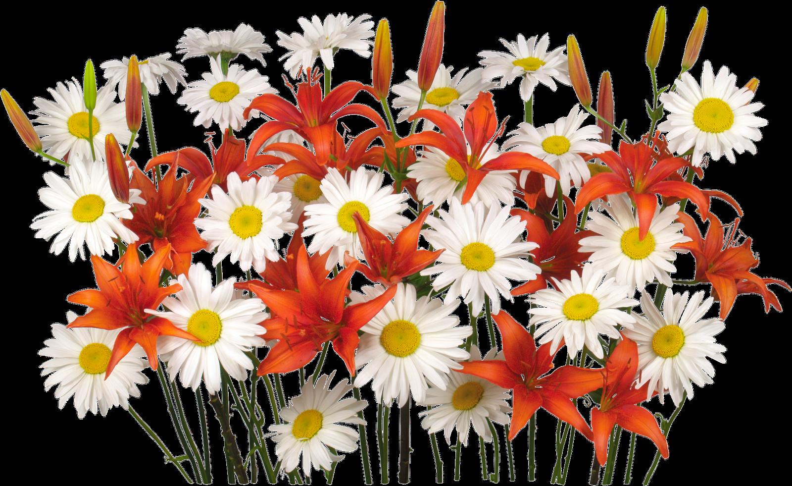 Resultado de imagen para ramos de flores animados png