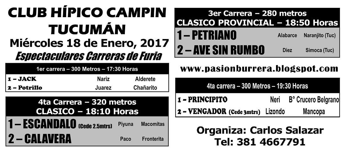 CAMPIN - 14 - PROGRAMA