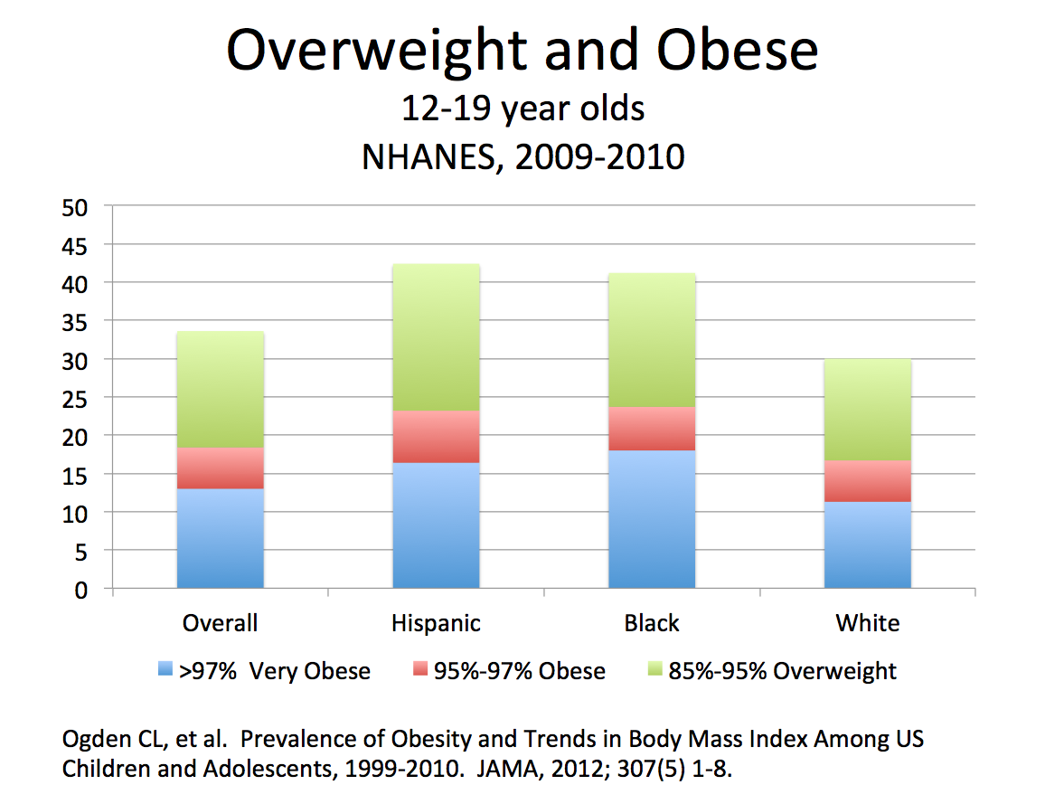 obesity is becoming a serious problem among our youth Especially among children, has emerged as a serious threat many of our schools is becoming the problem of childhood obesity and make our state a.